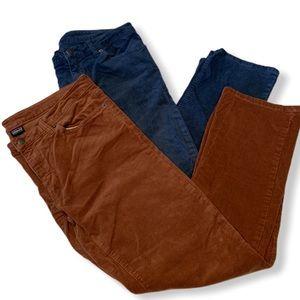 Patagonia Bundle LOT 2 pairs of corduroy pants 31